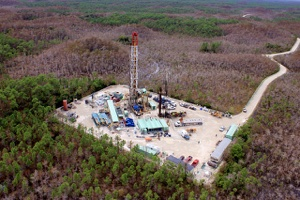 Darkening Drillers' Hopes in the Sunshine State