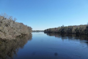 A Peaceful Retreat on the Suwannee River