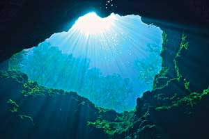 The Ripple Effect: Why We Love the Florida Springs