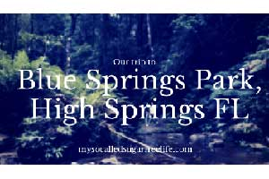 Our Trip to Blue Springs park
