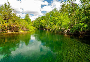 Board approves purchase of 4,900 acres to protect Silver Springs