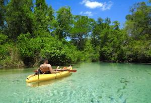 Florida Springs to Visit this Summer