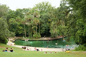 How to Spend a Day at Wekiwa Springs State Park