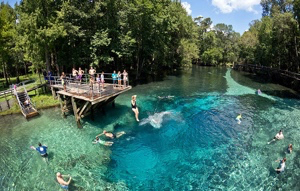 Help Blue Springs Become a State Park