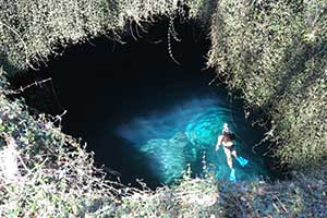 Two Must-See Springs In North West Central Florida