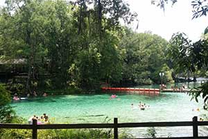 Fanning Springs State Park - A great time for the family!