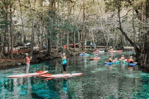 Why you Should Go Tubing on Ginnie Springs in Florida This Summer