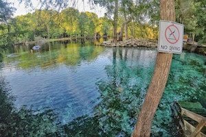 Why You Must Plan a Visit To Ginnie Springs
