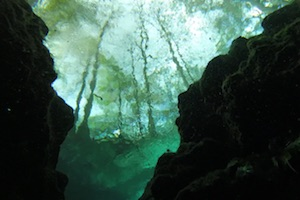 Ginnie Springs – Visibility Forever