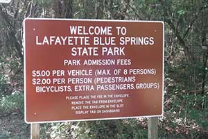 Lafayette Blue Springs in Mayo, Florida
