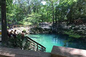 Mosquitoes Not Bugging Visitors at Madison Blue Springs