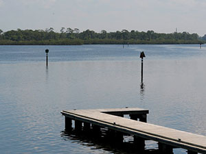 SWFWMD board to decide future of Pine Island Preserve