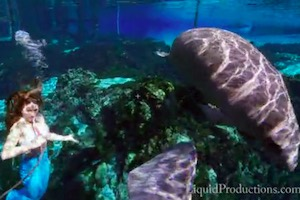 Mermaids Are Real & They Swim w/Manatees in Florida Springs