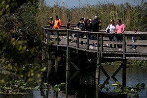 Florida Legislature Has Its Own Ideas for Conservation Fund