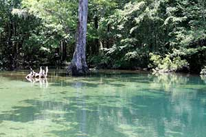 Babymoon Trip to Falling Waters and Ponce de Leon Springs