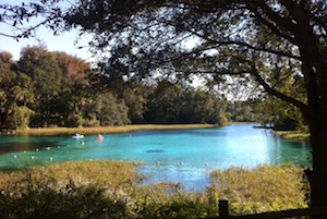 Florida Springs and Freshwater Aquifer Are at Risk