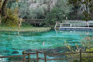 Opinion: How long until disaster forces us to clean up Florida springs?