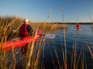 Florida by Water: Tackle the 'Saltwater Appalachian Trail'