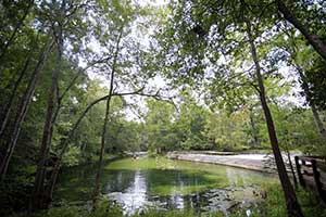 Alachua County seeks money to help Poe Springs