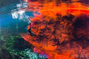 Diving in Dye in Florida's Freshwater Springs