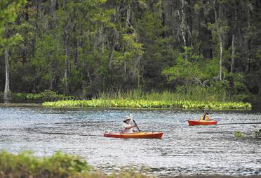 Environmentalists appeal to protect Silver Springs from aquifer pumping