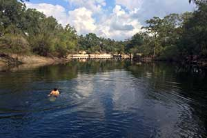 Troy Springs State Park - Branford, Florida