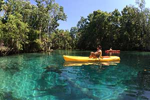 Have Steph Will Travel: Crystal River And Three Sisters Spring
