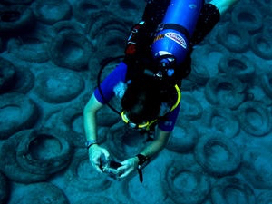 Fixing a catastrophe: Divers removing 90,000 tires from ocean