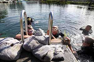 Clean up Weeki Wachee Spring, a high cost