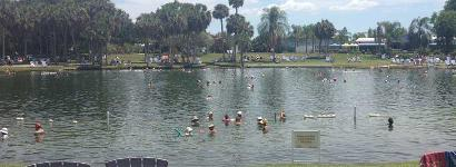 Warm day at Warm Mineral Springs
