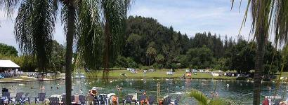 Full park at Warm Mineral Springs
