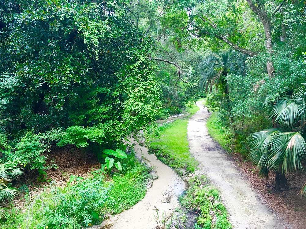 Ravine Gardens State Park Trail Map Garden Ftempo