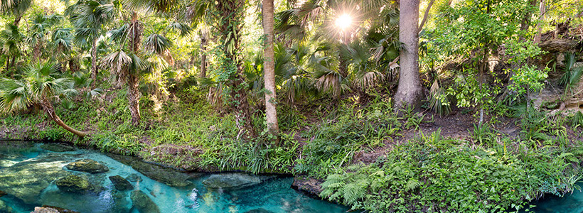 Florida Nature Photography | Panoramic view of Rock Springs