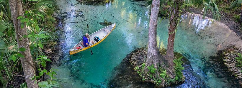 Florida Nature Photography | Rock Springs - Emerald Cut