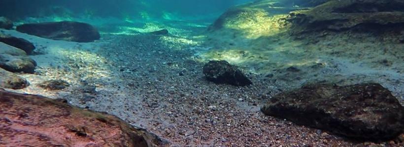 Linda Wilinski Photography | Underwater travels