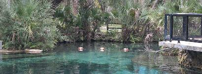 Juniper Springs Recreation Area, Ocala National Forest