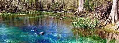 Naked Springs Clear Cool Water