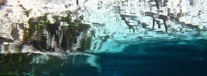 Back To My Roots